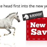 Hosting & domain name new year sale