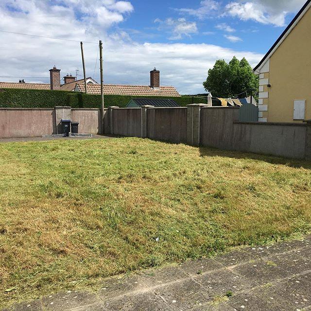 cur grass in the back garden
