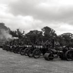 Enjoying Vintage Steam in Stradbally