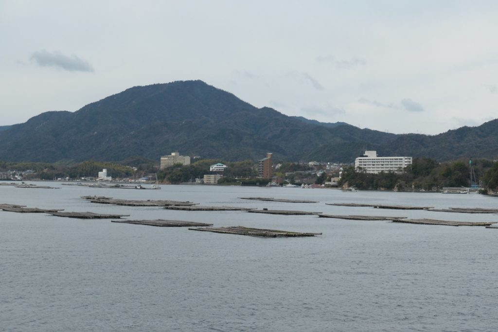 Oyster beds in the bay of Hiroshima, Japan